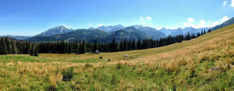 Hiking in Poland_Rusinowa Polana clearing in Tatra mountains