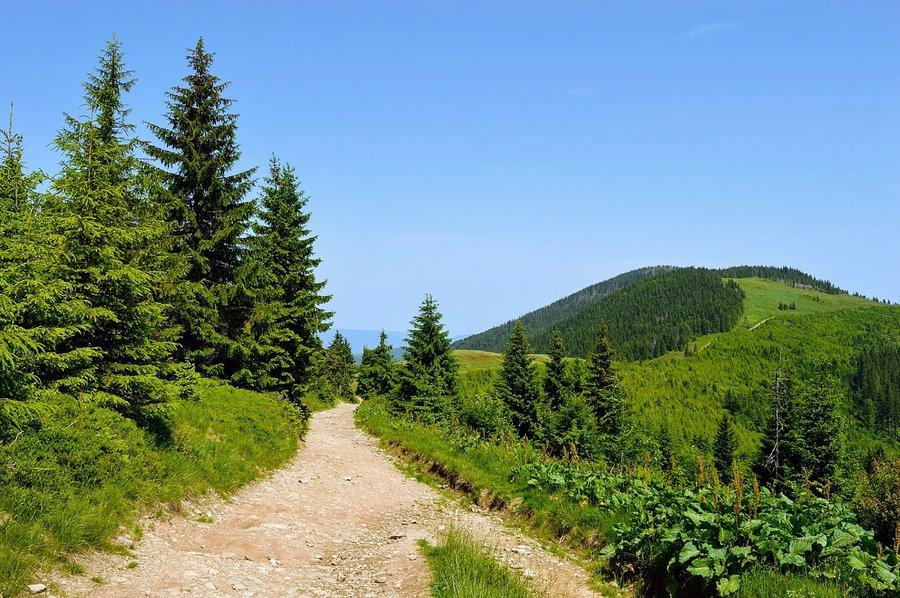 overhere.eu_hiking_trail_in_Beskidy_mountains_P.original